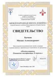 Диплом Юмейхо Россия. 2 Ступень