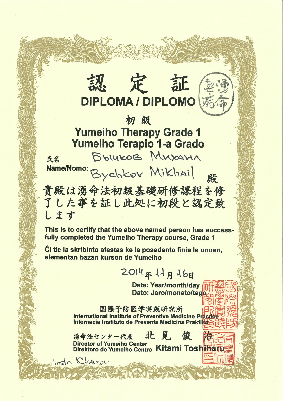 Yumeiho International Grade 1